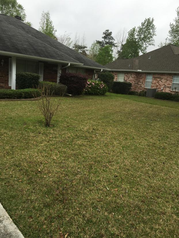 A recent lawn care service job in the area