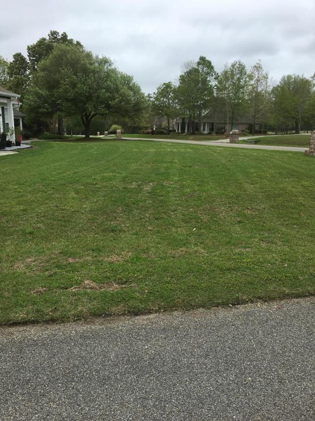 A recent lawn maintenance job in the area